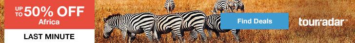Afarican Safari Mistakes