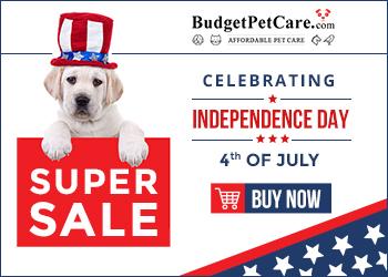 Celebrate Red, White & Blue with Big Savings at BudgetPetCare.com