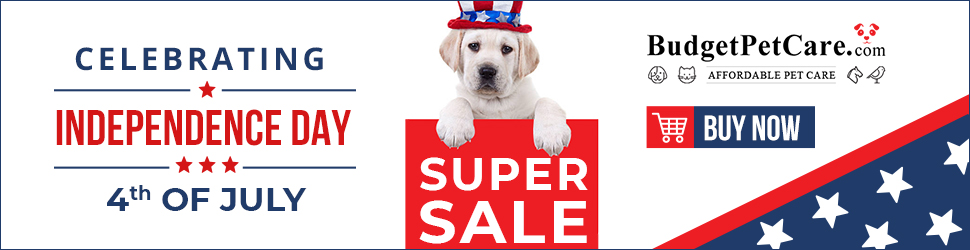 Celebrate 4th of July like Never Before with BudgetPetCare.com