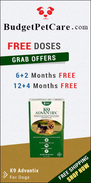 Buy Online Cheap Advantage For Dogs with Free Shipping in US