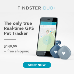 Active 125x125 Findster GPS Pet Tracker, Price and Free Shipping