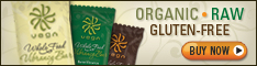 Vega Whole Food Vibrancy Bars