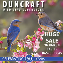 Great Holiday Gifts Under $20, shop Duncraft.com.