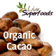 Raw Organic Cacao - Beans, Nibs, Powder & Butter