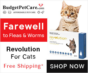 Best Deals for Revolution Cats