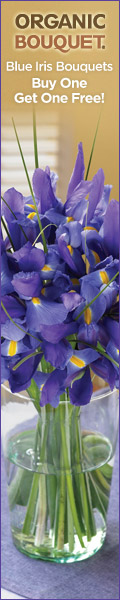 Send two Blue Iris Bouquets for the price of one o