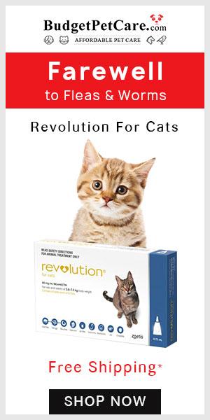 Big Savings on Revolution for Cats