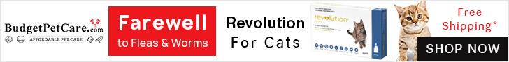 Revolution Cats + Extra 12% off