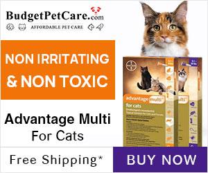 Advantage Multi Cats + 12% Extra Off