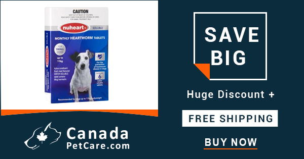Huge Savings On Online Nuheart For Dogs & Cats + Get Extra 10% Off & Free Shipping