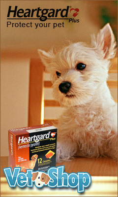 Get Heartgard at VetShop.com
