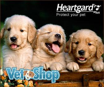 Get Heartgard at VetShop.com