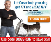 $50 off Treadmill Purchase