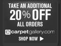 Reduced price on Rugs at eCarpetGallery.com