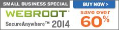 Webroot SecureAnywhere 2013