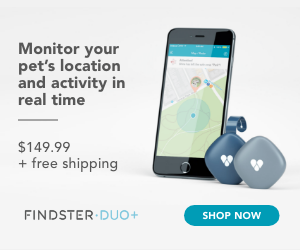 Monitor Your Pet's Location and Activity in Real time, CTA, Free Shipping and Price