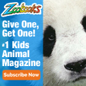 2-for-1 Sale & Free Animal Poster & Stickers