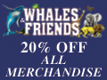 Whales & Friends Catalog