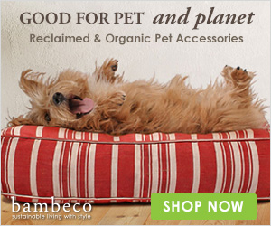 Bambeco : Reclaimed & Organic Pet Accessories