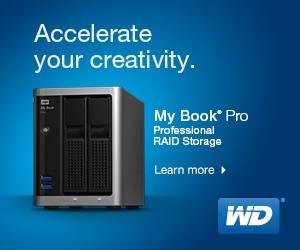 Western Digital My Book Pro RAID Storage
