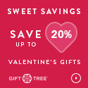 Savings Up to 20% Off Valentine's Day Gifts