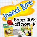 Insect Lore Sale