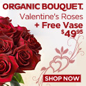 1 Dozen Roses Plus a Free Vase From $49.95