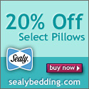 20% Off Best Selling Pillows