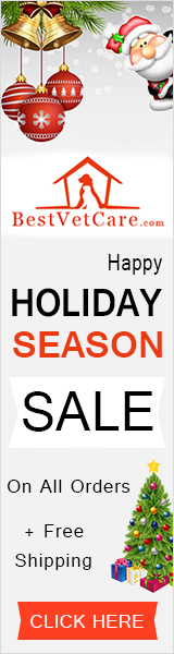 Happy Holiday Season Sale with 15% Extra Discount + Free Shipping