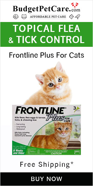 Frontline Plus Cats at Cheap Price