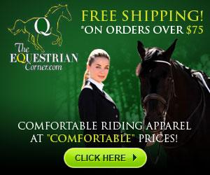 300x250 - Comfortable Riding Apparels