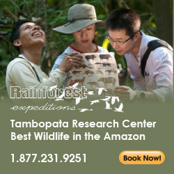 Rainforest Expeditions Tambopata