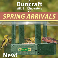 Shop Our New Spring Arrivals!