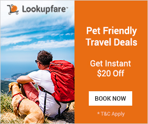 Pet Friendly Travel Deals!