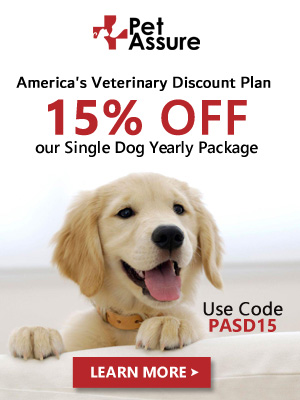 15% OFF Our Single Dog Yearly Package 300x400