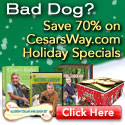 Up to $70 off Popular Cesar Millan Products