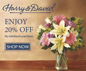 HarryandDavid promo