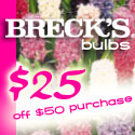 brecks bulbs Free $25 off any order of $50 or more!