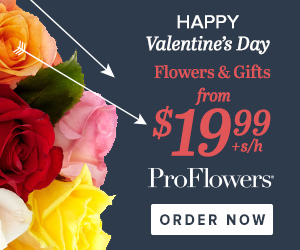Valentine's Day Flowers & Gifts from only $19.99 at ProFlowers