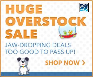 300x250 Overstock Sale