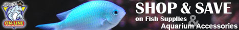Shop & Save on Fish Supplies