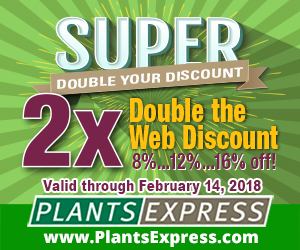 Super Double Your Discount! from Plants Express