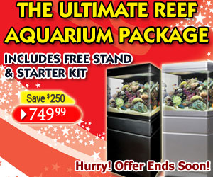 Ultimate Reef Aquarium Package