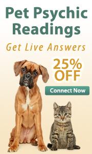 Live experts pet psychics