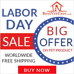 Celebrate Hard Work with BIG Savings! 12% Off + Free Shipping Worldwide. Use Coupon: LDBVC12