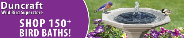 Shop Duncraft Wild Bird Superstore for over 150 Bird Baths Solutions!