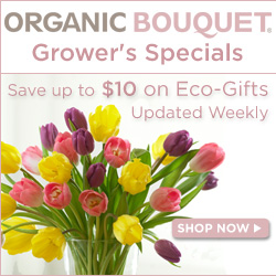 10% off Holiday Gift Baskets