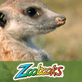 Zoobooks - Free Trial + Free Shipping Deal