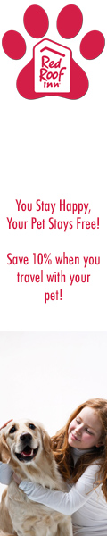 Save 10% when you travel with your pet!
