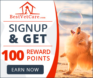 Best Vet Care - BestVetCare.com Rewards Points